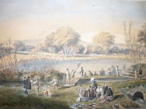 Fishing Harting Pond